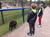 sikaloo_zoo_17