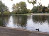 ekskurzija_london_051
